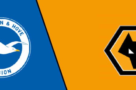 Brighton vs Wolves Live stream Premier League 2019 Today Match Team News, Start Time, Preview